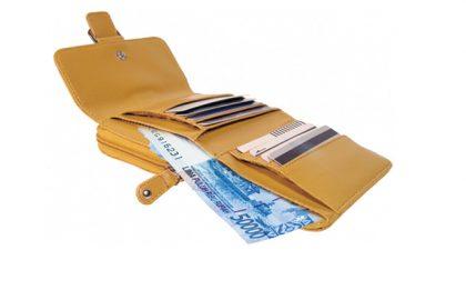 Tips Mudah Mengatur Uang Saku