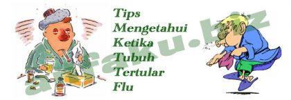 Tips Mengetahui Ketika Tubuh Tertular Flu